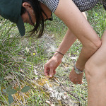 Beth examining moss