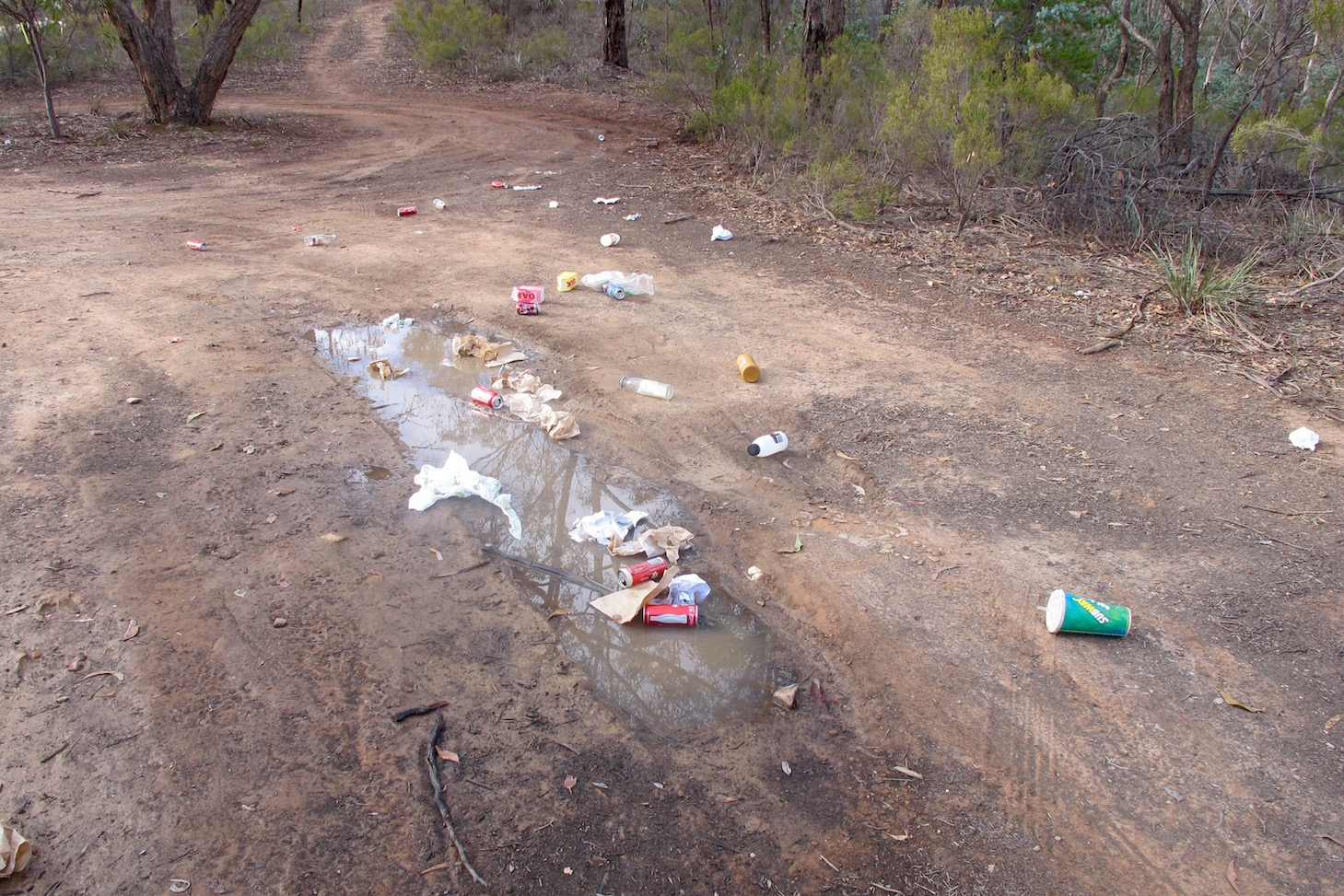Rubbish strewn over the track opposite Kalimna Point. A couch has been pushed into the bush nearby. This track has to be frequently cleaned by Parks Victoria, at the taxpayers' expense.