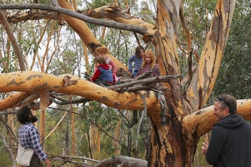 web-2-tree-climbing