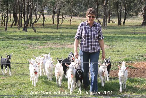fobif-text-ann-marie-with-goats