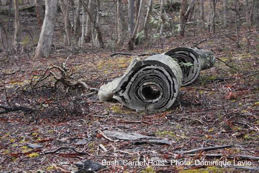 bush-carpet-rolls