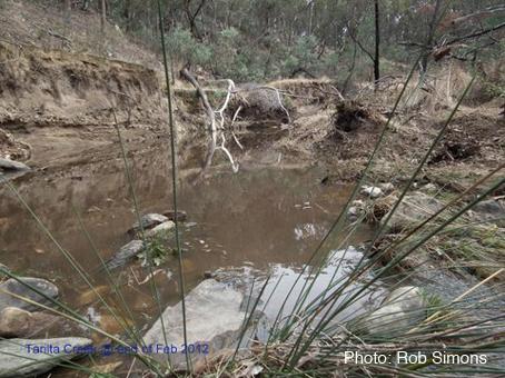 Tarilta creek @end of Feb 2012