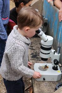 microscope.2303_8404