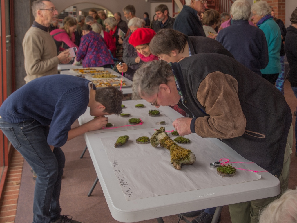 Part of the crowd at Saturday's launch. Identifying mosses isn't so different from identifying other plants: you just have to get a bit closer.
