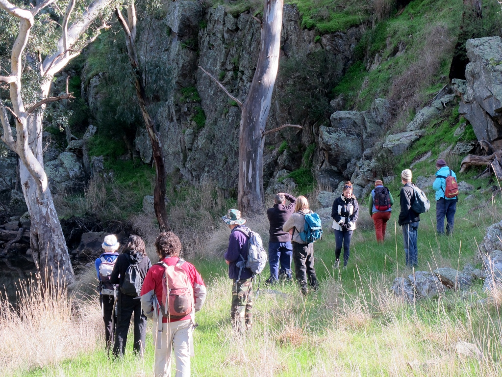 FOBIF walkers checking out the cliffs at the bottom of the Muckleford Gorge.