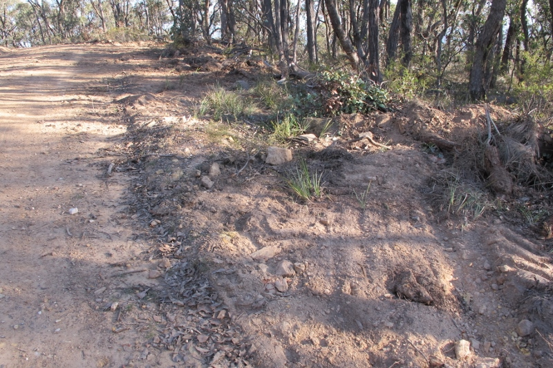 Fryers Ridge: managers concede that scalping is not 'ideal'. It appears that better methods are too expensive for the Department's budget.