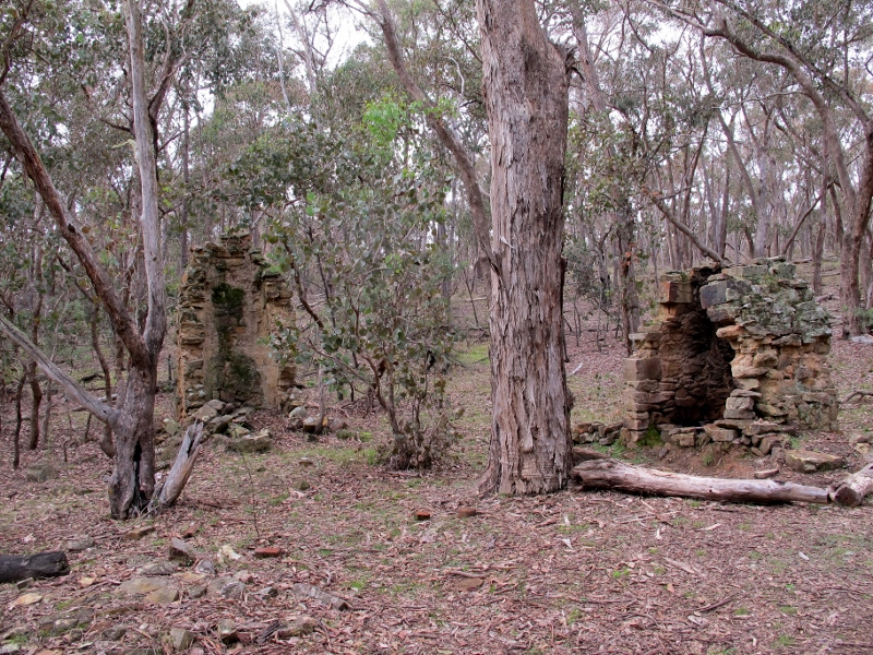 Hunt's huts, Brown's Gully, Castlemaine Diggings NHP: '150 years later the landscape has mellowed and taken on a new cultural identity that awaits deciphering by the discerning tourist. How will this be done? How can the landscape speak for itself?'