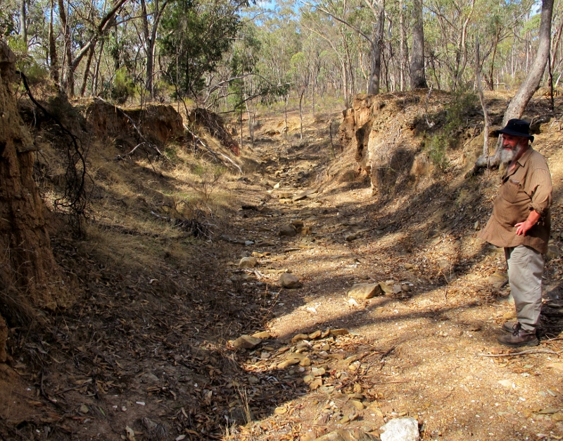The late Doug Ralph surveying old and new watercourse damage, Castlemaine Diggings NHP, 2013. This is heritage too--but how should it be presented to the public?