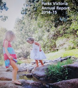PV Annual Report: 'our throat has been cut, and we're feeling just fine.'