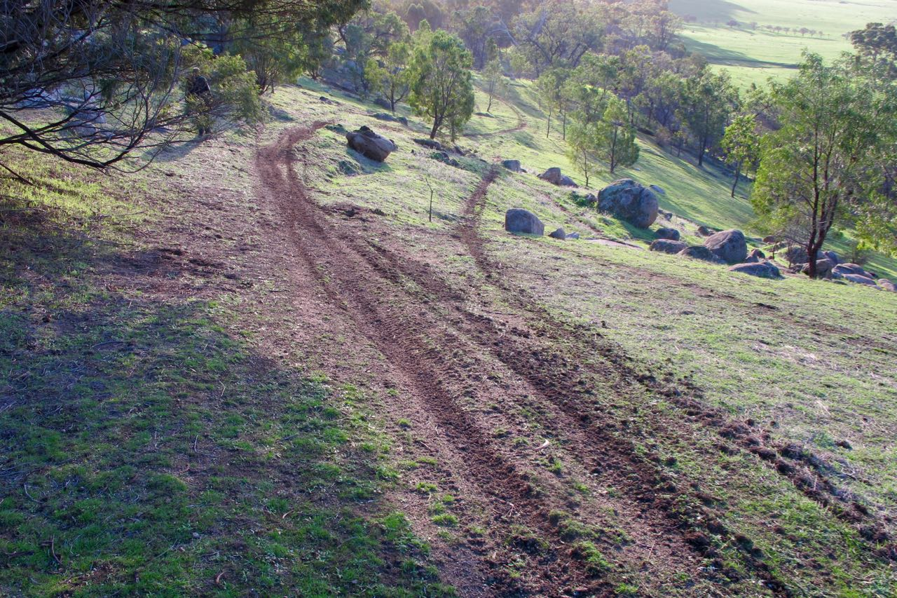 Trail bike scars below the Ballantinia Track: an effective gate might not be the complete solution, but it would be a help.
