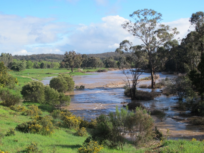 Forest Creek from the 'lookout' at Wesley Hill, September 14...